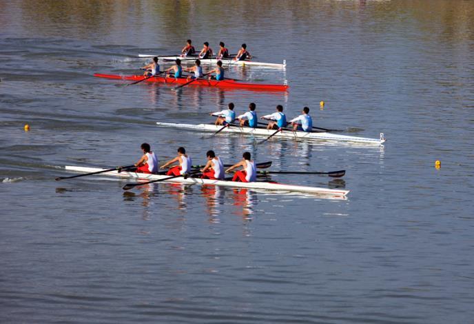 西式划舟賽4艘競賽