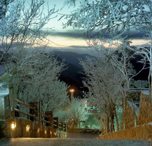 太平山冬雪