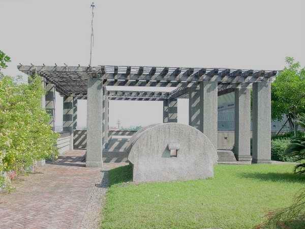 屋頂木花架