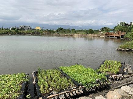 Eco-fish pond become food and economy resources for the community