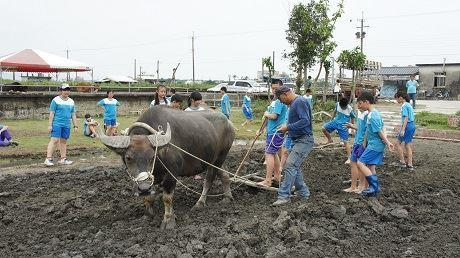 Re-constructing the abandoned fish ponds to perform a practice that follows the essence of mother nature and eco-friend