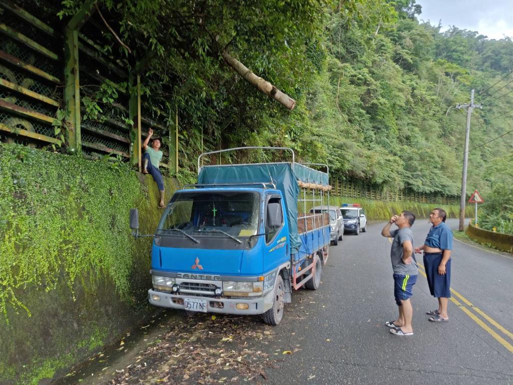路樹傾倒影響交通 三星警助排除