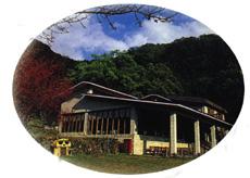 棲蘭森林遊樂區