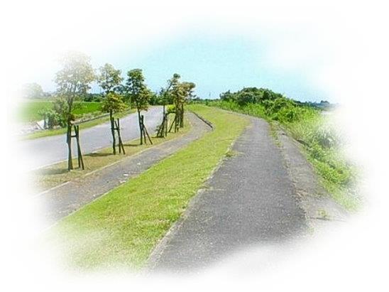 安農溪自行車步道及人行步道