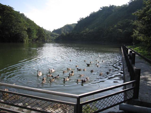 長埤湖風景區共3張圖