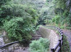 龍泉瀑布風景區復育區