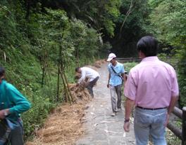 覆蓋稻草讓其自然腐爛,營造蝸牛孳生環境