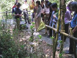 於復育區實地了解螢火蟲及周邊環境生態