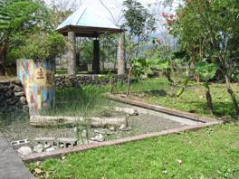 憲明國小以現有之生態池規劃作為水生黃緣螢之復育區