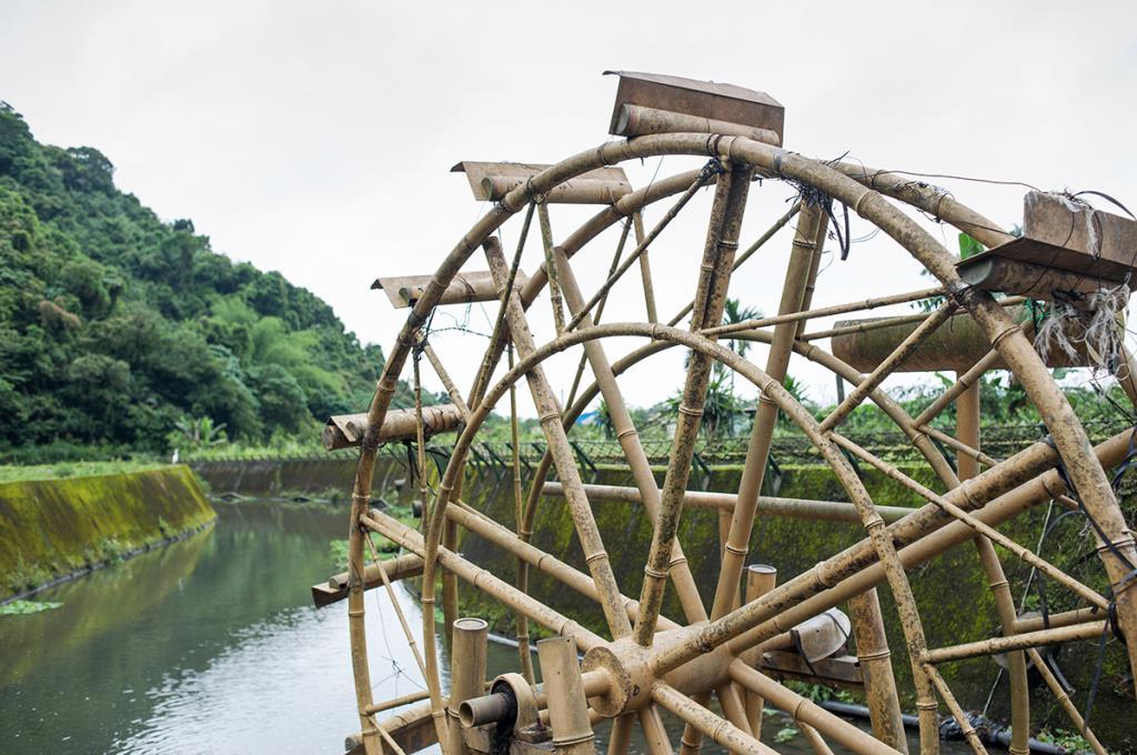 蓮成農特產品館水車