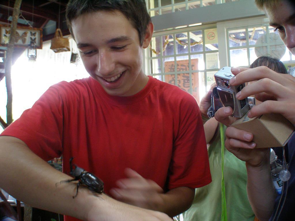 鳳凰宿甲屬生態館-遊客與甲蟲互動