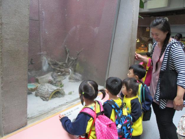 猜猜看,我們正在看什麼動物呢!.JPG