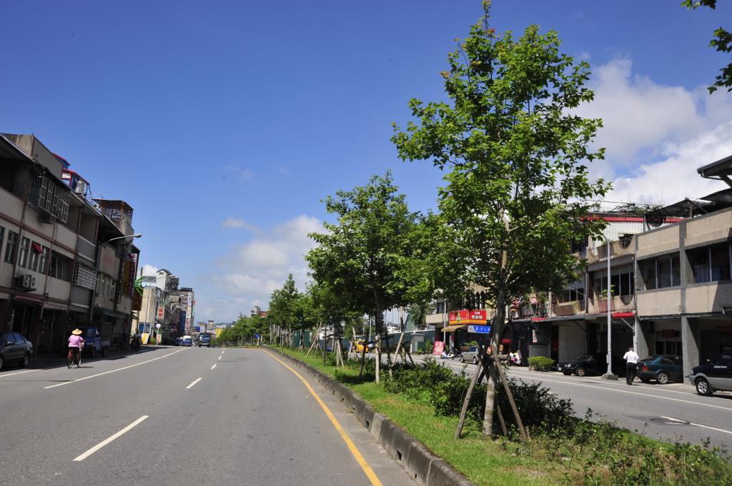鄉道路樹綠美化