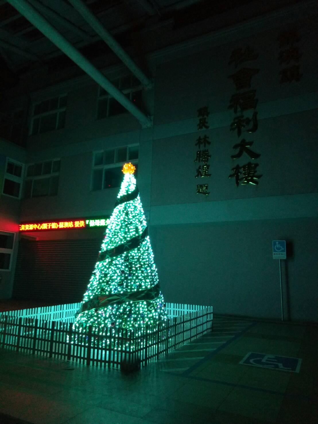 海洋聖誕樹2