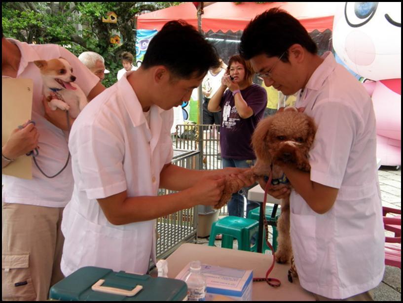 狂犬病預防注射活動