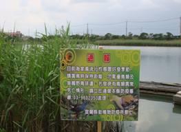 水鳥保護區防疫告示牌