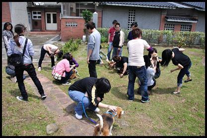 推動流浪動物領養(學生志工服務)
