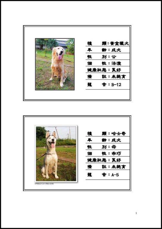 網路公佈流浪犬領養資訊以提昇認養率