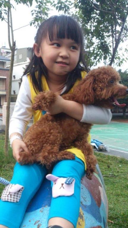 犬名:摩米亞