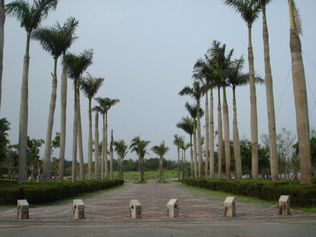 椰子廣場圖共兩張