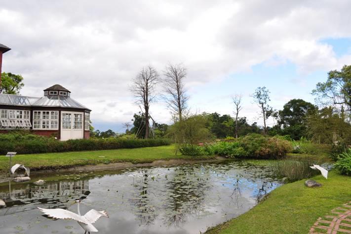 伊莉莎庭園